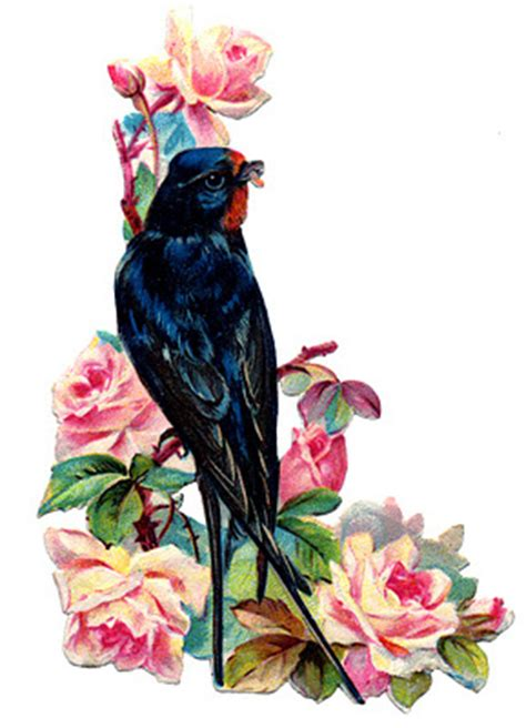 Victorian Bird Image - Swallow with Pink Roses - The